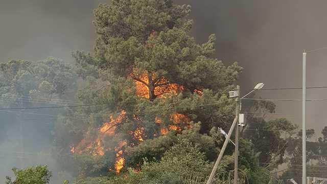 Massive blaze in Mevo Modi'im (Photo: Fire and Rescue Authority)