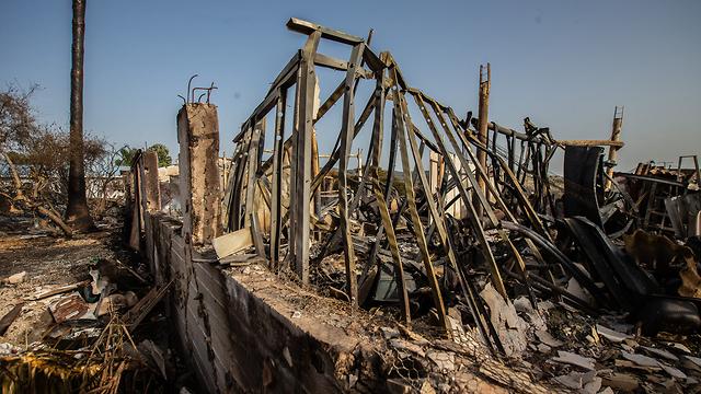 Damage from bushfire in Kibbutz Harel (Photo: Tal Shahar)