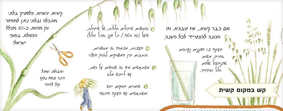 """מתוך """"לוח שנה בגינה"""" (איור: אילנה שטיין)"""