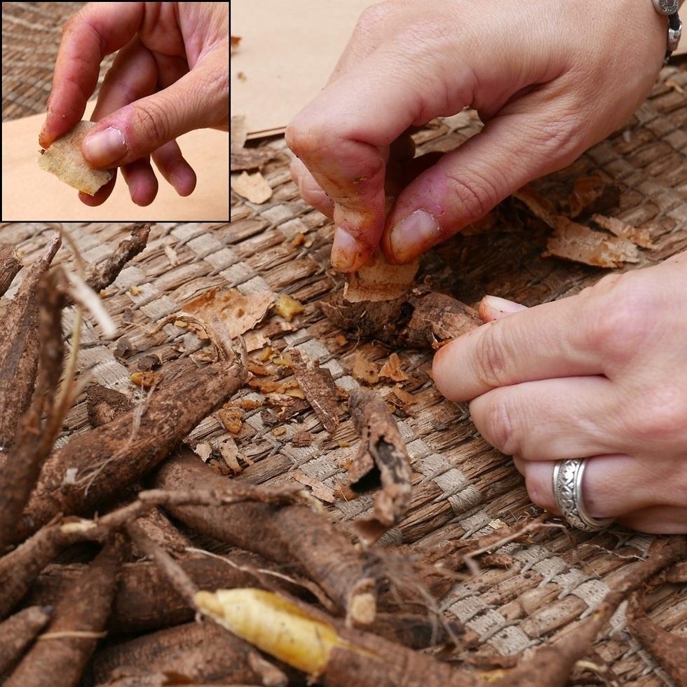 ארכיאולוגיה ניסויית: ניסוי חיתוך פקעות בעזרת נתז ממוחזר קטן. למעלה מימין האופן בו נאחז הנתז ביד בזמן ביצוע הניסוי  (צילום: פלביה ונדיטי)