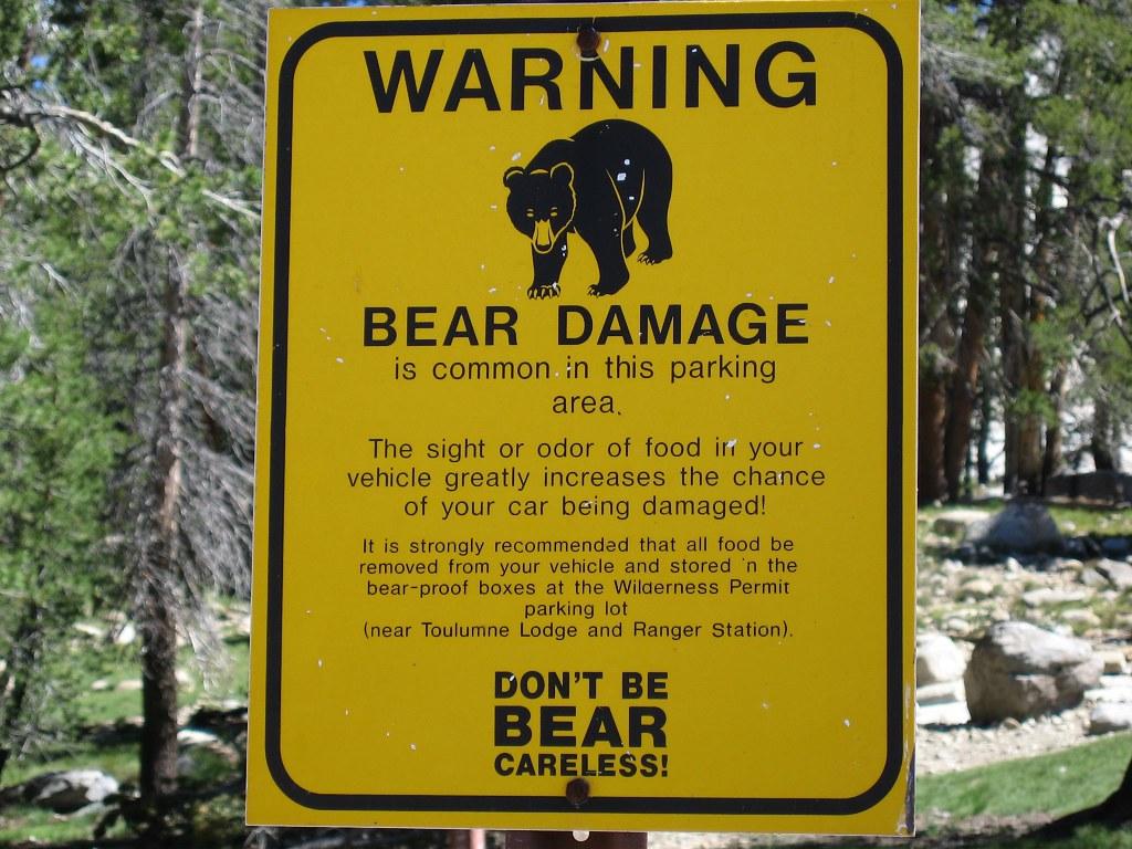 В Канаде не рекомендуется оставлять еду в машинах, если в этой зоне водятся медведи