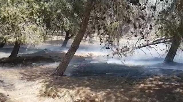 חשד לשריפה באזור יער שמחוני כתוצאה מטרור בלונים. עשן נראה בכל האזור ()
