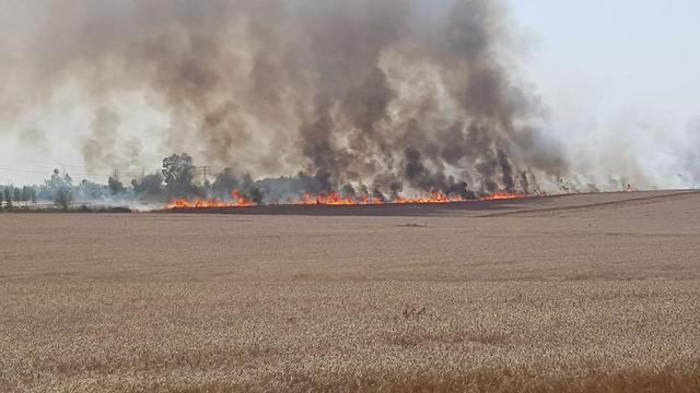 Пожар у кибуца Кфар-Аза