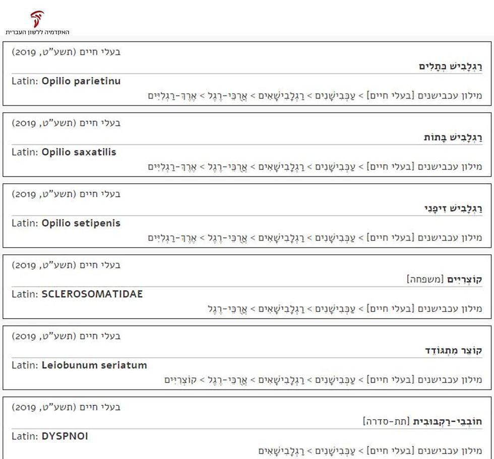 חלק מרשימת 73 השמות החדשים שהוספו למילון הזואולוגי של העכבישנים (צילום: מתוך אתר האקדמיה ללשון העברית)