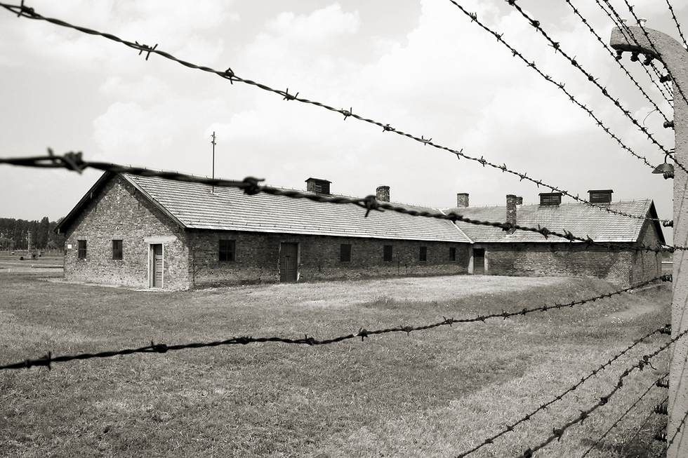 The electric fence in Auschwitz (Photo: Shutterstock)