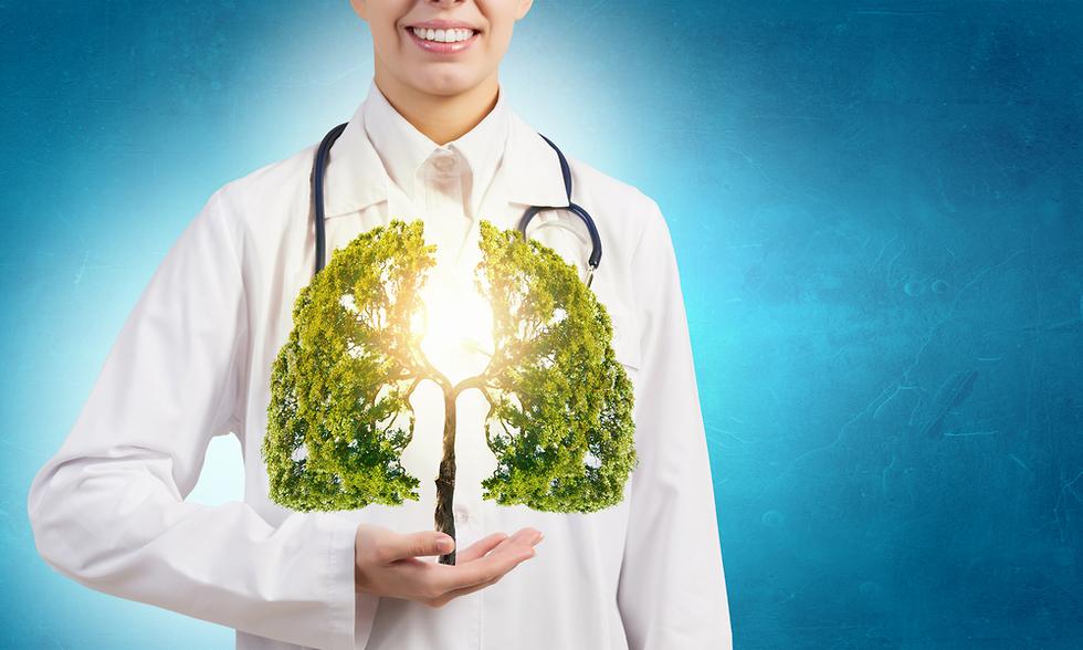 אילוסטרציה של ריאות נקיות (צילום: Shutterstock)