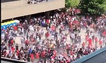 אנשים בורחים מיריות במצעד האליפות בטורונטו (צילום מסך)