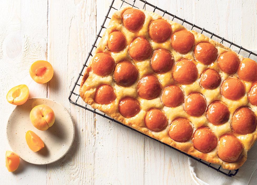 עוגת משמשים (צילום: בועז לביא, סגנון: ענת לבל)