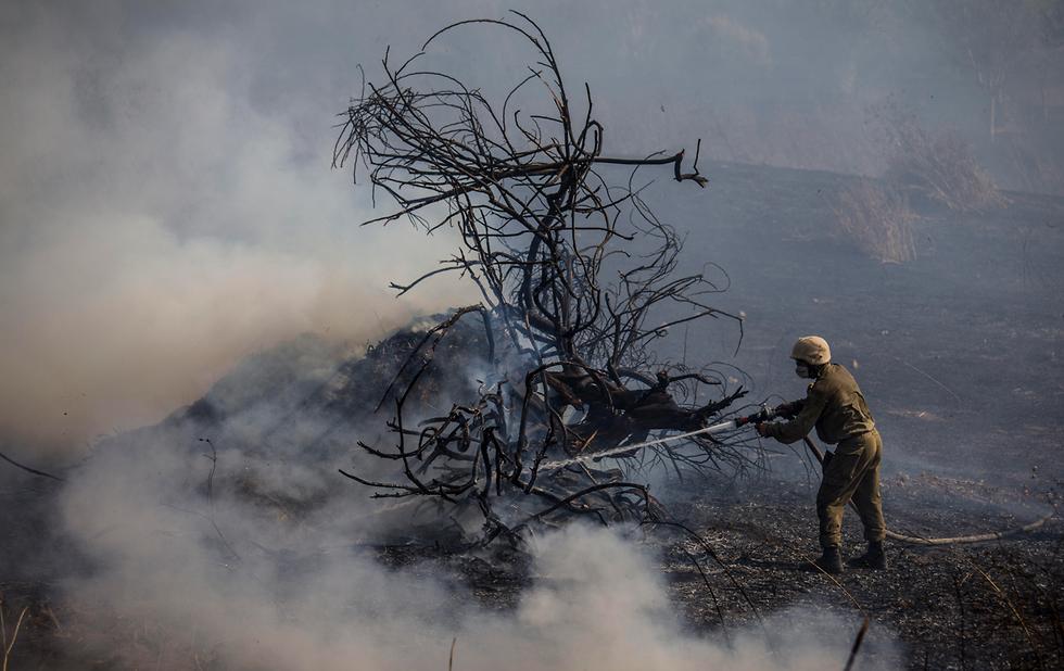 שריפה בלוני בלון בלונים תבערה עוטף עזה טרור הבלונים (צילום: AP)