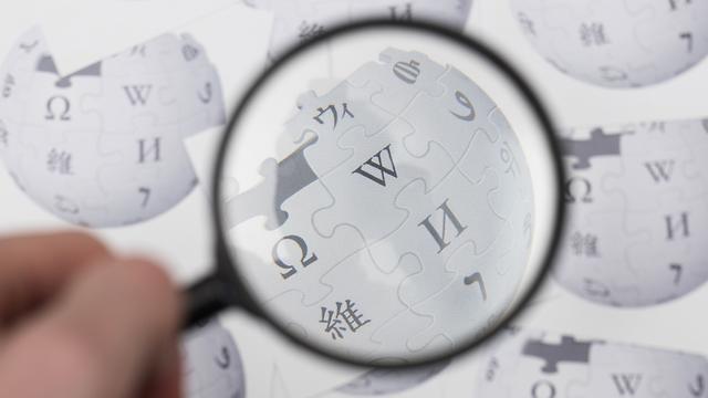 ויקיפדיה (אילוסטרציה: Shutterstock)
