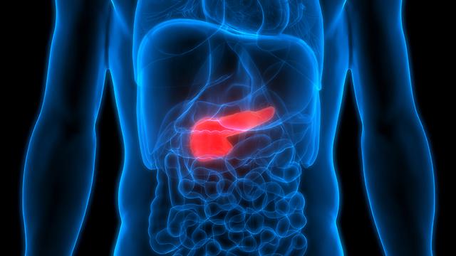 סרטן הלבלב (צילום: shutterstock)