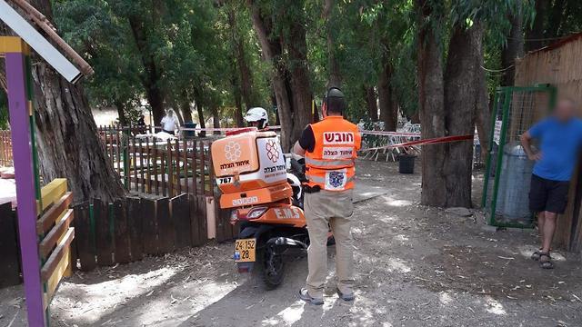 עץ קרס ילד בן 10 אקשן פארק לכיש קרית גת (צילום: דוברות איחוד הצלה)