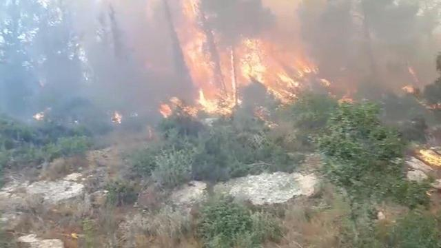 A fire near the community of Aderet (Photo: Fire Department, Jerusalem District)
