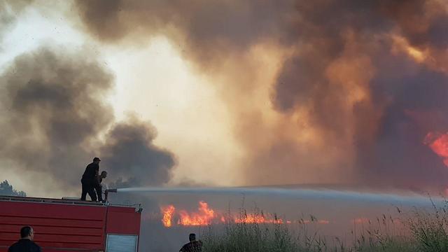 שריפת קוצים ברהט (צילום:  דוברות כבאות והצלה נגב)