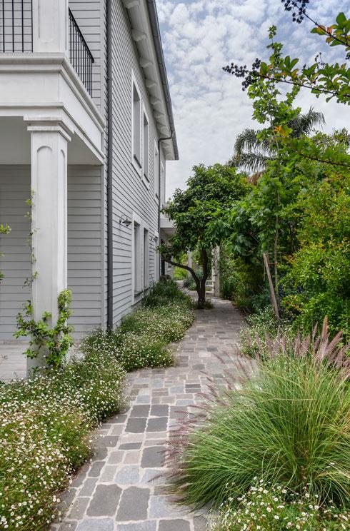 השביל המוביל לדלת הכניסה שבצד הבית (צילום: עודד סמדר)