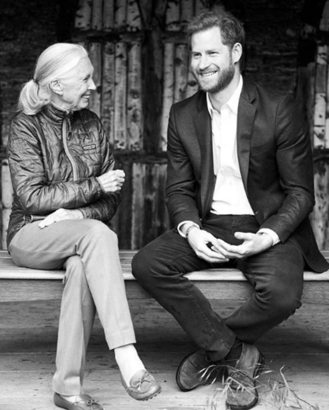 """בשיחה צפופה עם הגברת ד""""ר ג'יין גודול (צילום: אינסטגרם)"""