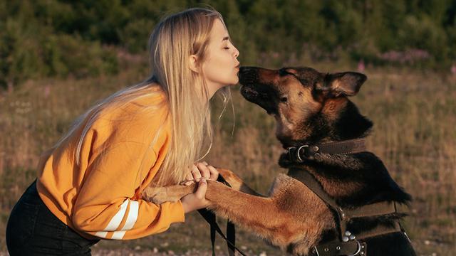 לכתבה כלב ליקק אישה זיהום בריאות (צילום: shutterstock)
