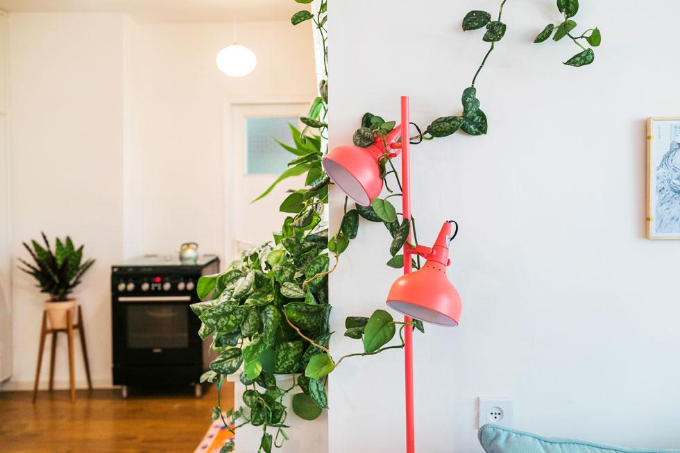 בית שבכל העציצים בו שולבו מנגנונים להשקיה עצמית (עיצוב: דקלה מנחם). עציץ פתיל הוא רעיון שמתאים בגם לעציצים תלויים, כך שלא תצטרכו להגיע אליהם לעיתים קרובות, והם גם לא יטפטפו (צילום: טלי דברת)