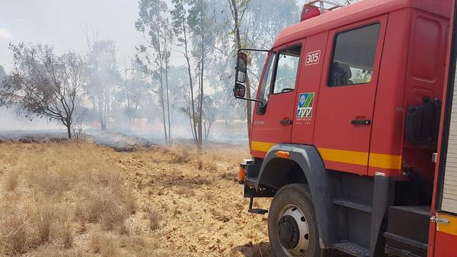 שריפה יער שמחוני עוטף עזה ( צילום: משה ברוכי, יערן קק״ל)