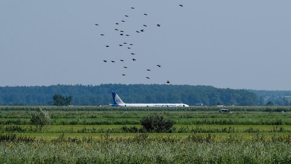 מטוס איירבוס A321 אורל איירליינס נחיתת חירום ליד מוסקבה רוסיה (צילום: AFP)