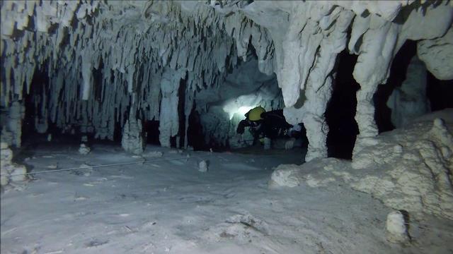 הלן וולפמן צוללת מערות (צילום: רובי מיארה)