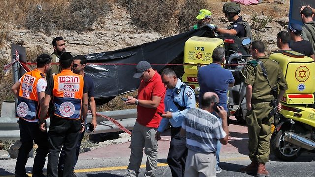 פיגוע דריסה גוש עציון (צילום: AFP)
