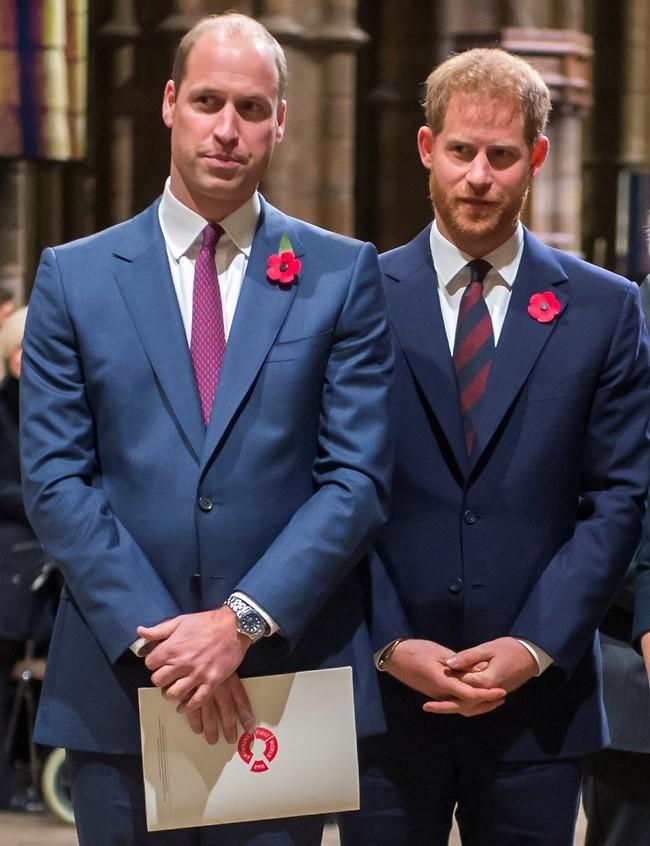 אחים, בסופו של דבר. וויליאם והארי (צילום: Gettyimages)