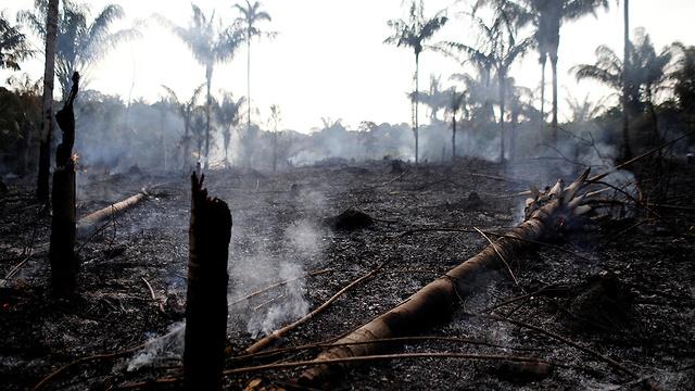 ברזיל שריפות ב אזור ה אמזונס שטח ש נשרף ע