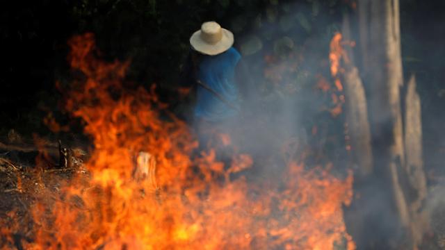 ברזיל שריפות ב אזור ה אמזונס גבר עובד ב שטח אש  (צילום: רויטרס)