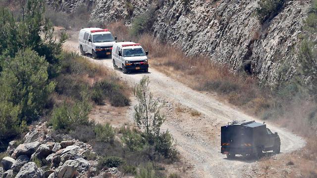 Эвакуация пострадавших. Фото: AFP