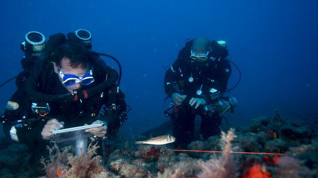 חקר הים. חוקרי בית הספר למדעי הים על שם צ'רני (צילום: חגי נתיב)
