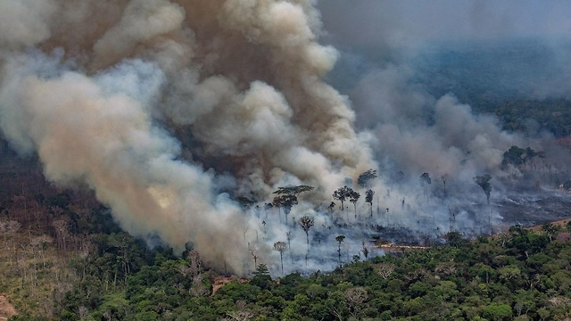 כיבוי שריפות באמזונס (צילום: AFP)