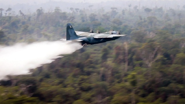 כיבוי שריפות באמזונס (צילום: EPA)