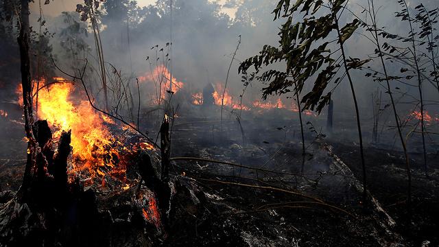 ברזיל שריפת שריפה אמזונס (צילום: AP)