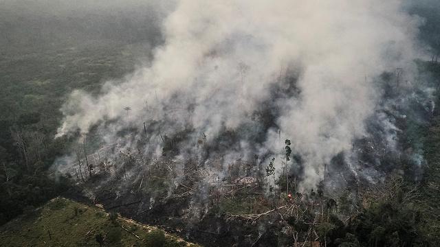 ברזיל שריפת שריפה אמזונס (צילום: רויטרס)