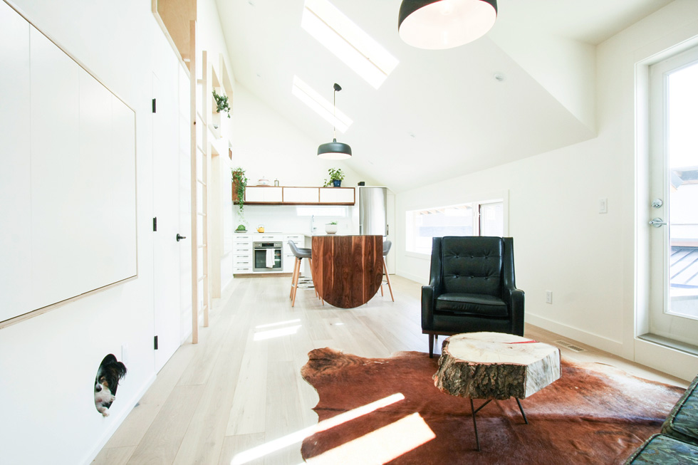 בית בקיר עם פתח עגול לחיית המחמד המשפחתית (משמאל) (צילום: studio north)