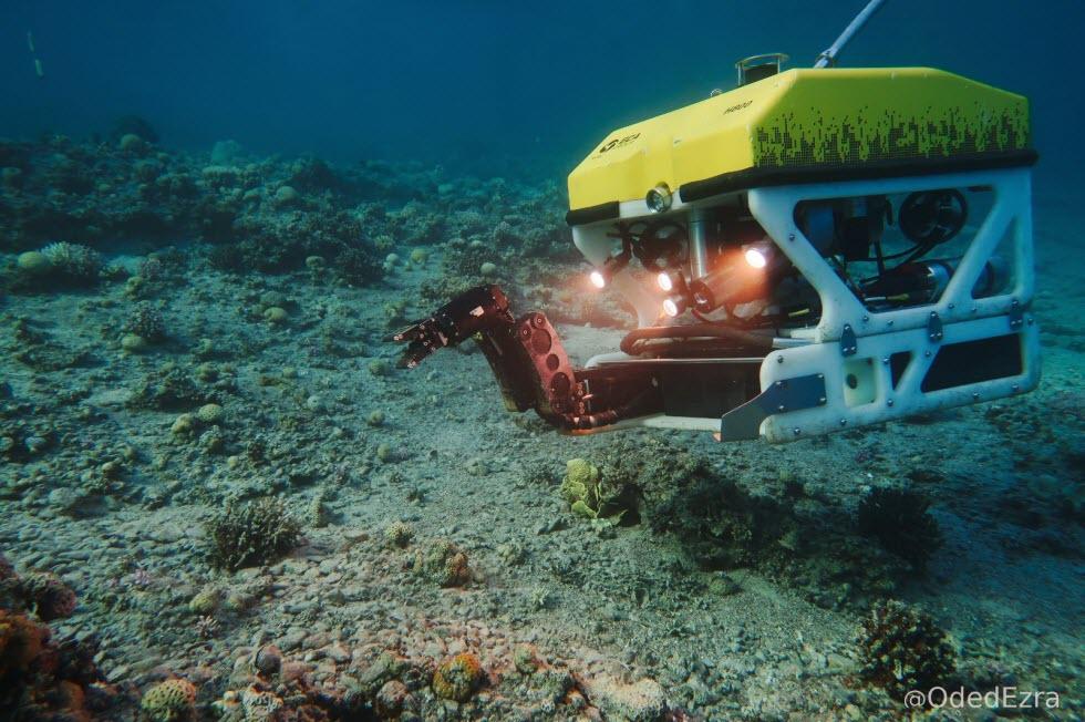 רובוט תת ימי בעת איסוף נתונים במעמקי הים.  (צילום: באדיבות עודד עזרא)