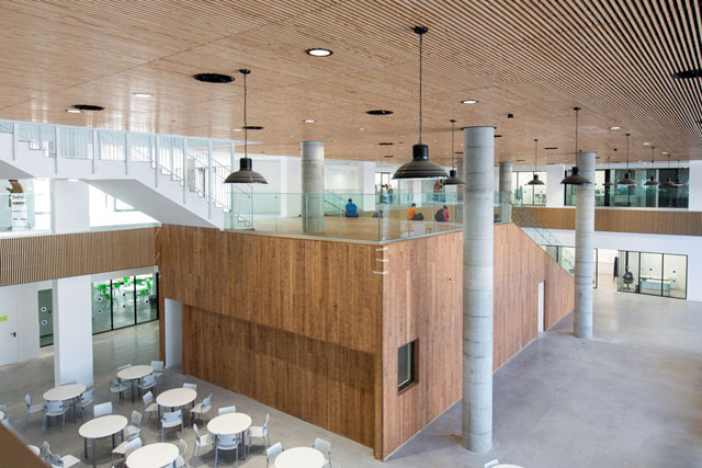 """В новом здании школы """"Шевах-Мофет"""". Фото: Дор Нево"""