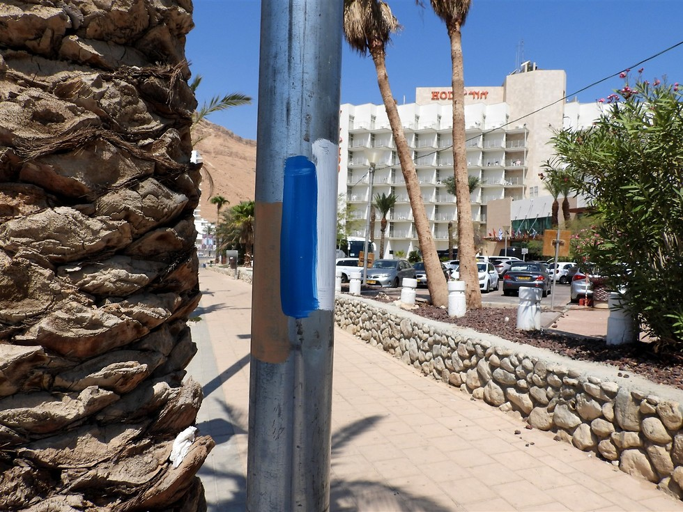 סימון שביל ישראל ליד מלונות עין בוקק (צילום: דב גרינבלט, החברה להגנת הטבע)