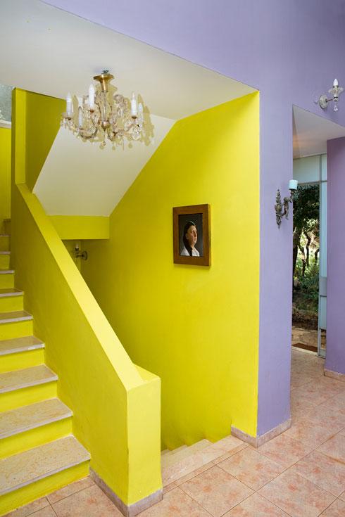 שילובי צבעים מפתיעים בתוך הבית (צילום: ענבל מרמרי)