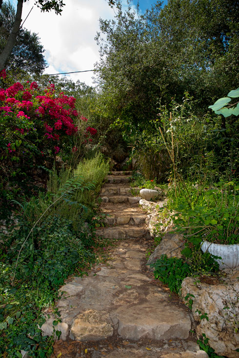 השביל המוביל לבית (צילום: ענבל מרמרי)