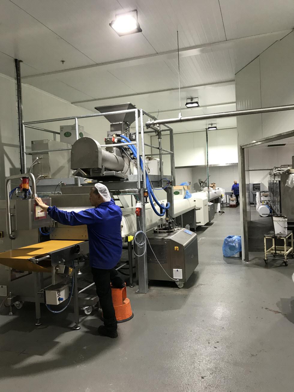 מפעל תות  (צילום: יח