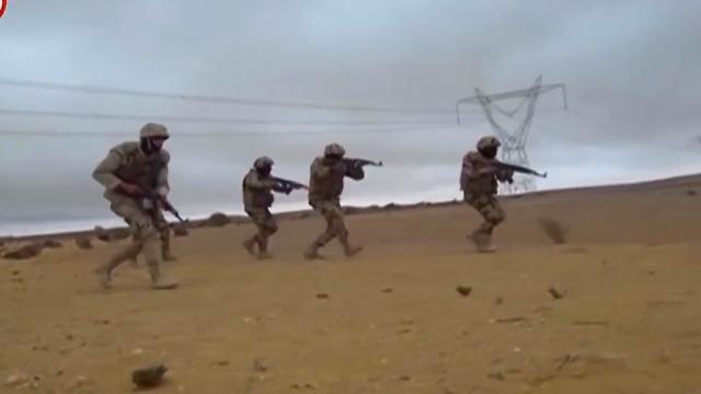 חיסול של 118 אנשים והשמדתם של 33 מאחזים ( צילום: צבא מצרים)