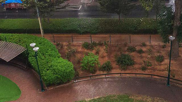 Heavy rain in Rishon LeZion (Photo: Yaniv Gerling)