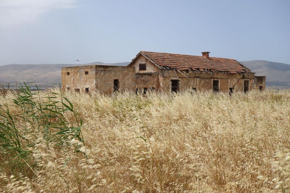 מחנה גדעון, ליד בית שאן, הוא בסיס צבאי שונה מאוד מהמקובל, שמכיל שלל מבנים היסטוריים בסגנון הבינלאומי. מתנהל כעת מאבק להצלתם (צילום: מיכאל יעקובסון)