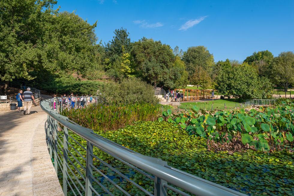 זהו הגן הבוטני הגדול בישראל, 120 דונם שטחו. הוא נוסד בשנות ה-60 כגן למחקרי האוניברסיטה העברית, ונפתח לציבור בשנת 2000 (צילום: ליאור גרונדמן)