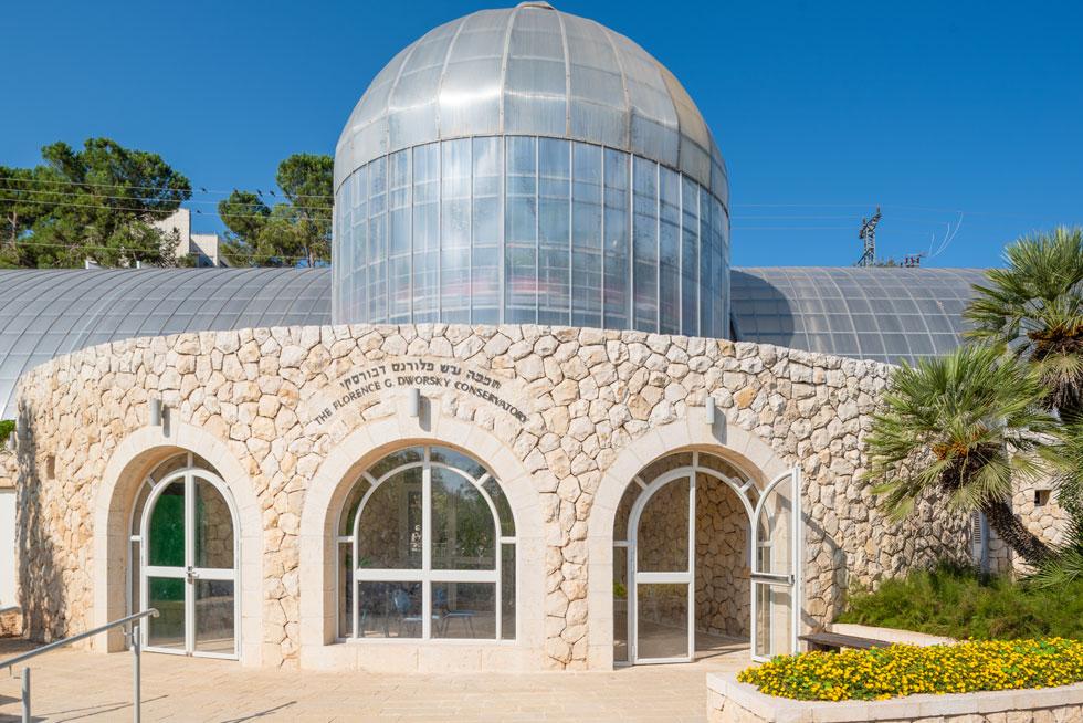 החממה החדשה הוקמה על שטחה של חממה ישנה שנהרסה כמעט כליל, למעט חזית האבן המעוגלת, שנשמרה ושולבה במבנה החדש (צילום: ליאור גרונדמן)