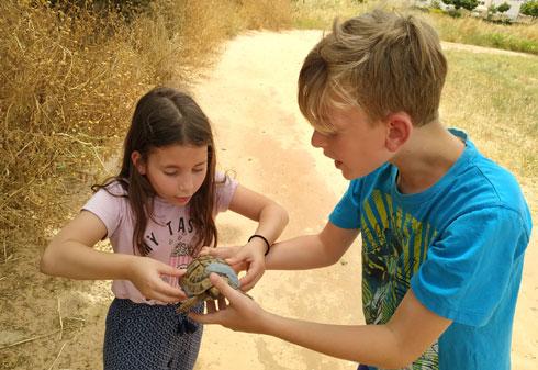 """ילדיה של דוידוביץ' לומדים לטפל בחיות. """"יש אצלנו תורנויות"""" (צילום: עדי דוידוביץ')"""