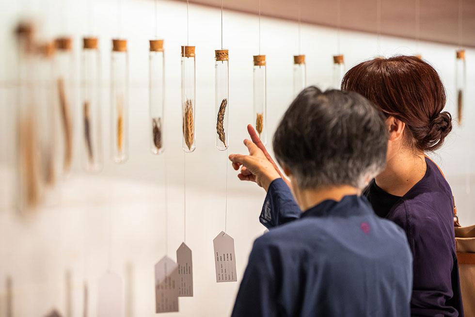 התערוכה זכתה בפרס התערוכה המובילה, מתוך יותר ממאה שהוצגו השנה ב-Designart Tokyo (צילום: באדיבות בית הנסן)