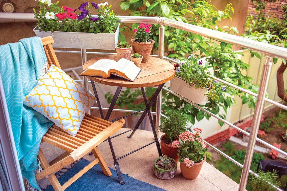 שהות בין צמחים משרה שלווה, מפחיתה מתח, טוענת באנרגיה ומחדדת את החשיבה (צילום: shutterstock)
